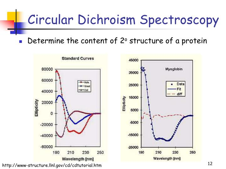 circular dichroism and secondary structure of Current methods for fitting protein circular dichroism (cd) spectra with basis spectra for helix, (β-sheet and unordered structure to estimate the fractions of the secondary structures are.