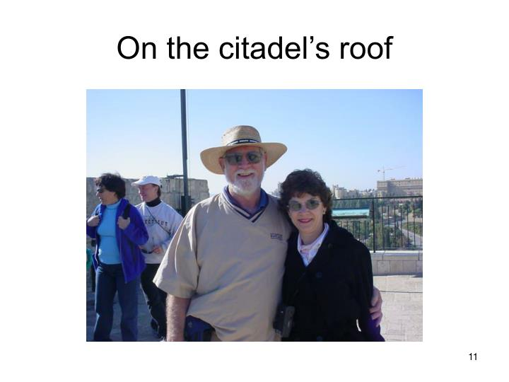 On the citadel's roof