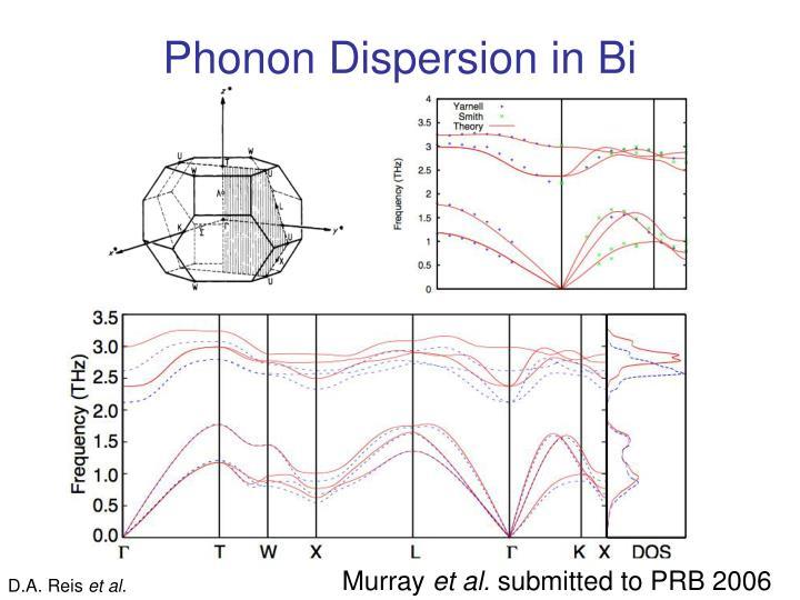 Phonon Dispersion in Bi