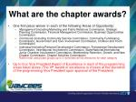 what are the chapter awards