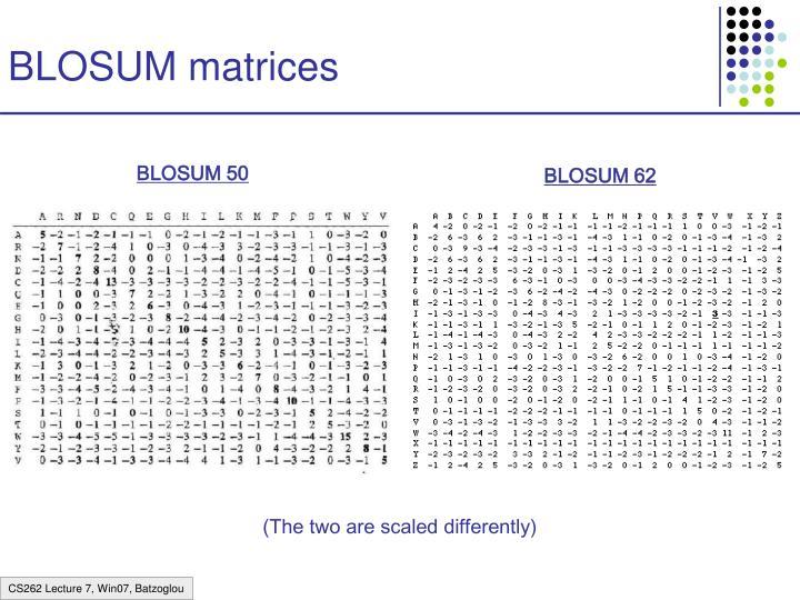 BLOSUM matrices