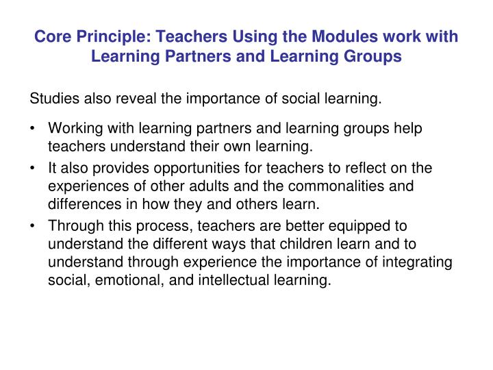 Core Principle: Teachers Using the Modules work with Learning Partners and Learning Groups
