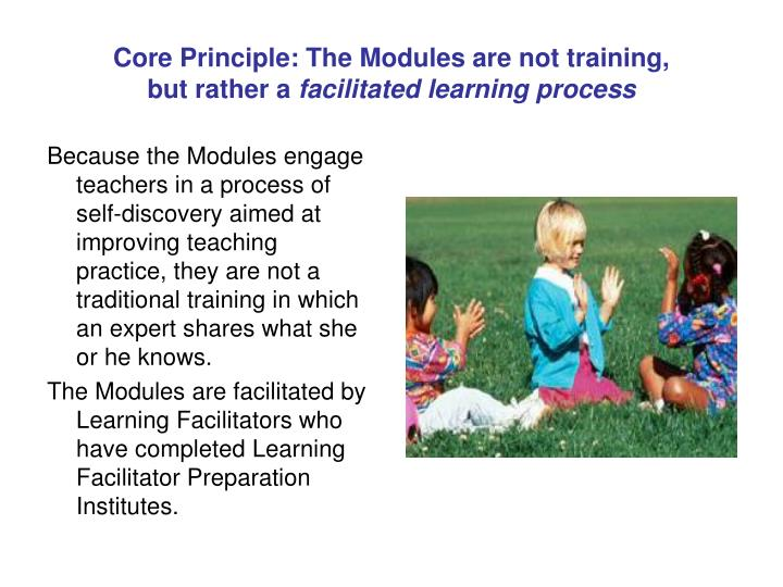 Core Principle: The Modules are not training,