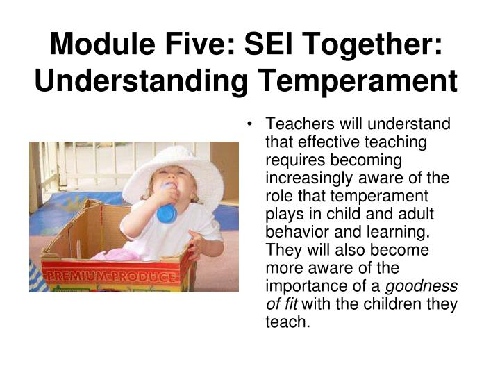 Module Five: SEI Together: Understanding Temperament