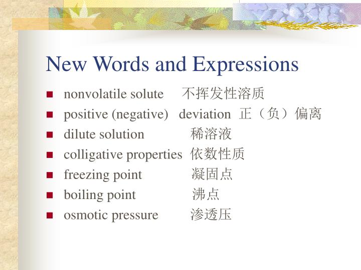 New Words and Expressions