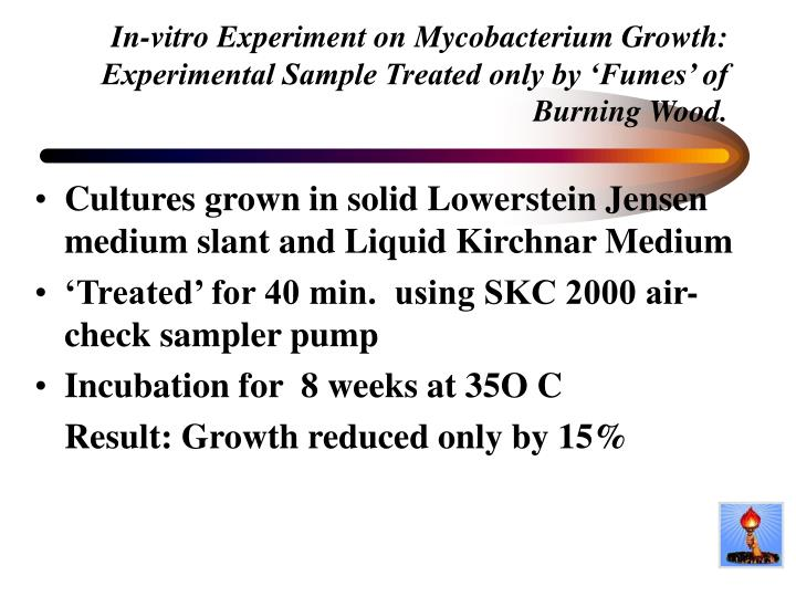 In-vitro Experiment on Mycobacterium Growth: Experimental Sample Treated only by 'Fumes' of Burning Wood.