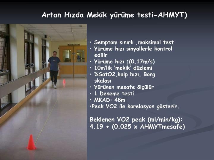 Artan Hızda Mekik yürüme testi-AHMYT)