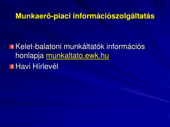 Munkaerő-piaci információszolgáltatás