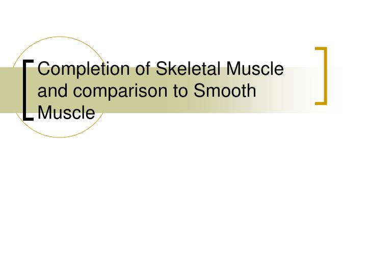 completion of skeletal muscle and comparison to smooth muscle n.