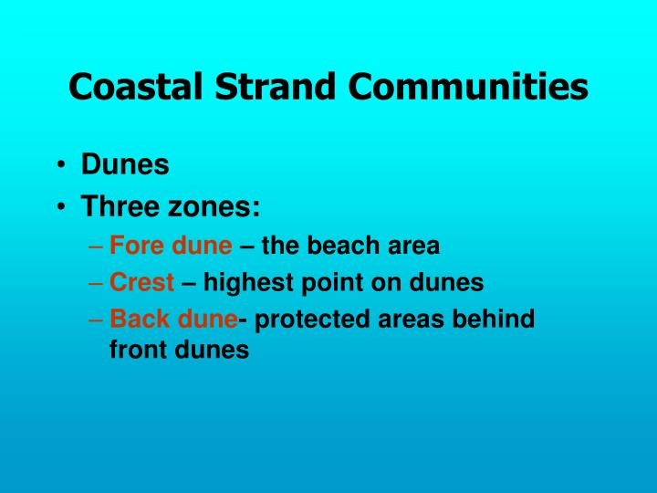 Coastal Strand Communities