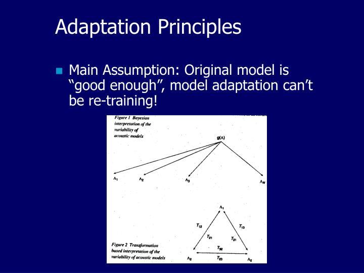 Adaptation Principles