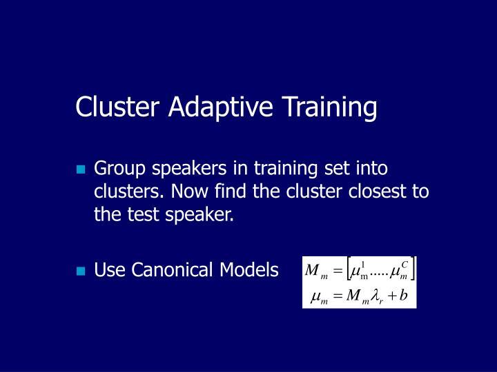 Cluster Adaptive Training