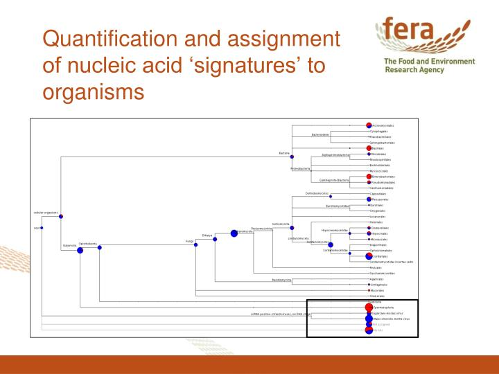 Quantification and assignment of nucleic acid 'signatures' to organisms