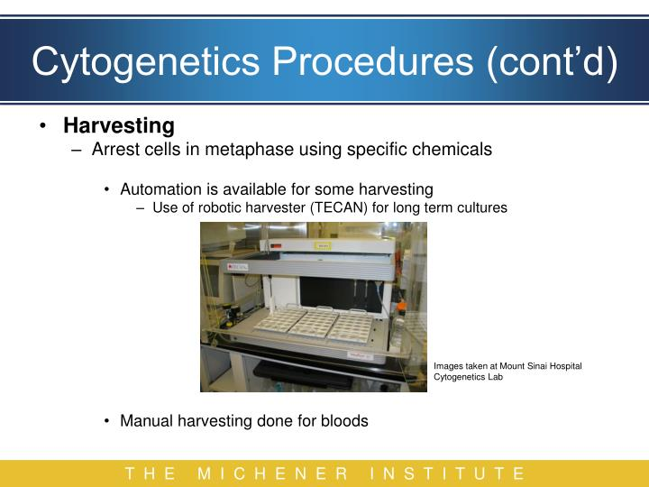 Cytogenetics Procedures (cont'd)