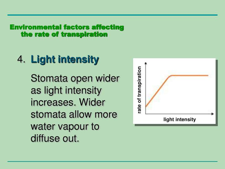 rate of transpiration