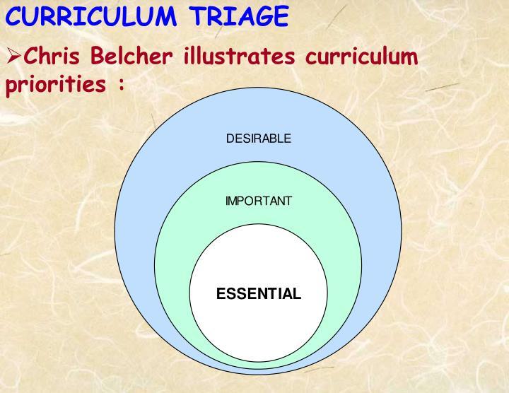 CURRICULUM TRIAGE