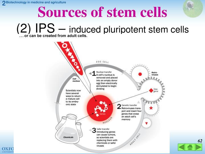 Sources of stem cells