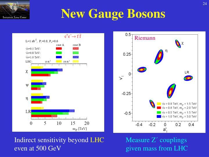 New Gauge Bosons