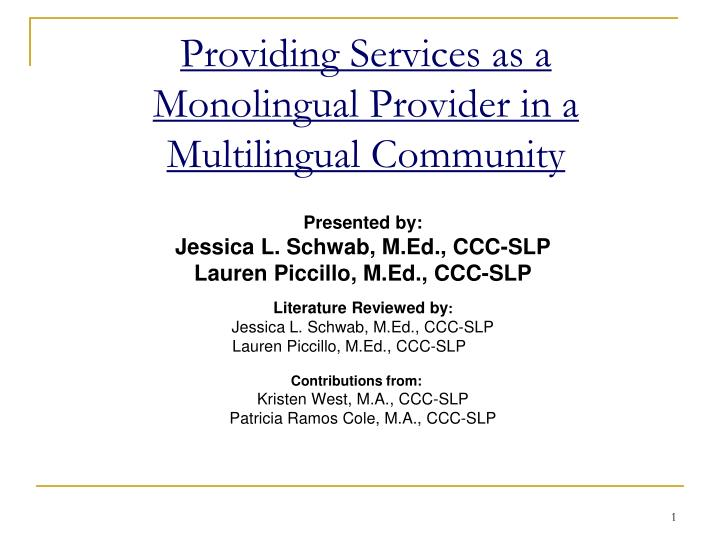 providing services as a monolingual provider in a multilingual community n.