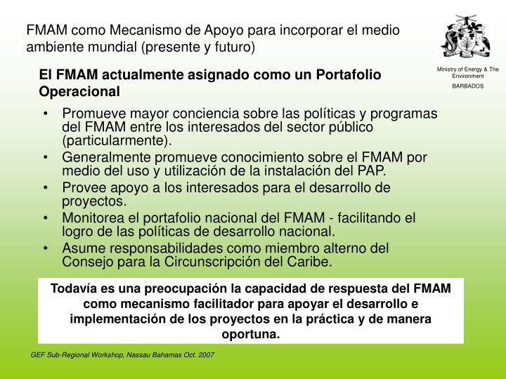 FMAM como Mecanismo de Apoyo para incorporar el medio ambiente mundial (presente y futuro)
