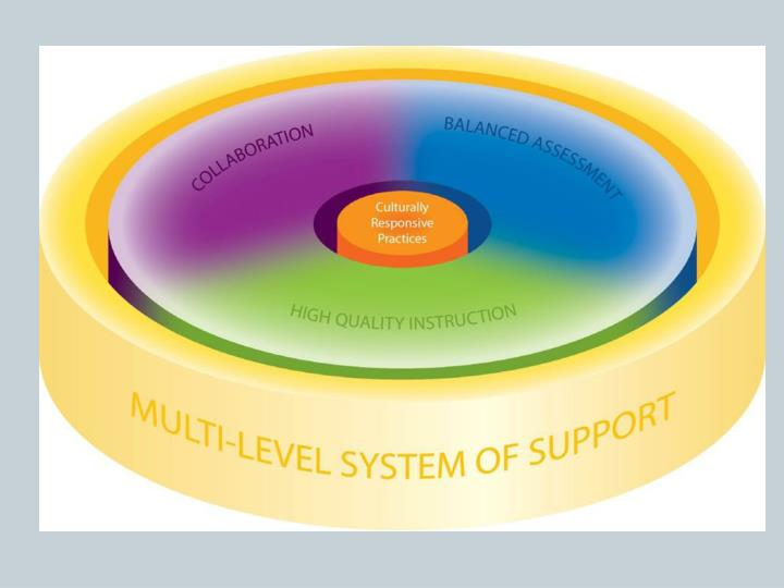 Julia hartwig multi level systems of support consultant special education team dpi
