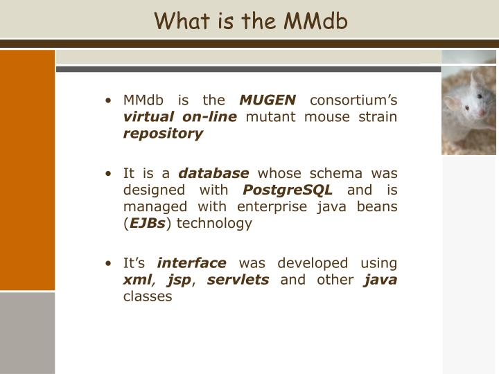 What is the MMdb