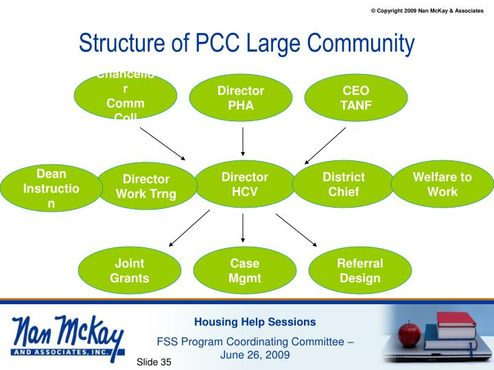 Structure of PCC Large Community