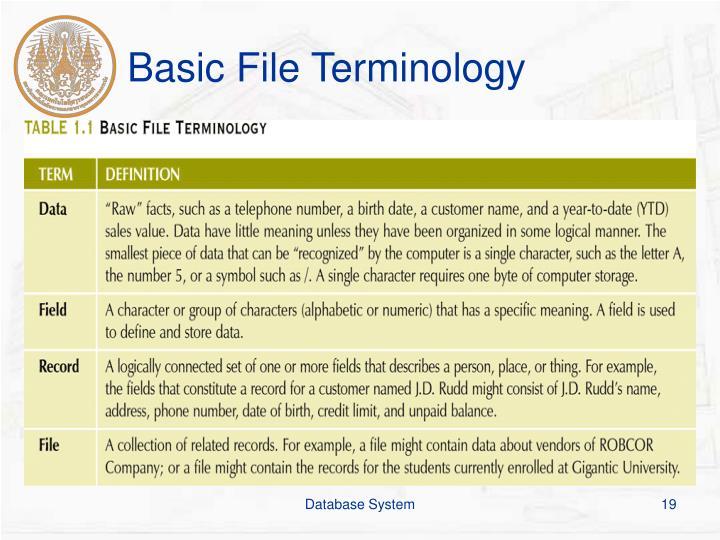 Basic File Terminology