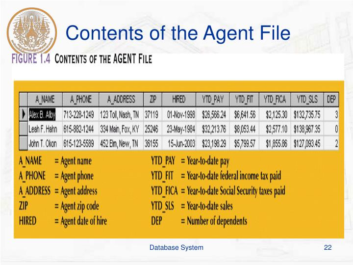 Contents of the Agent File