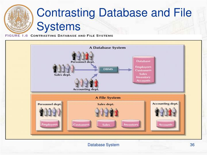 Contrasting Database and File Systems
