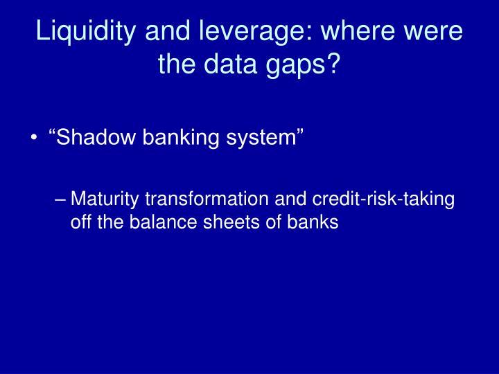 Liquidity and leverage: where were the data gaps?