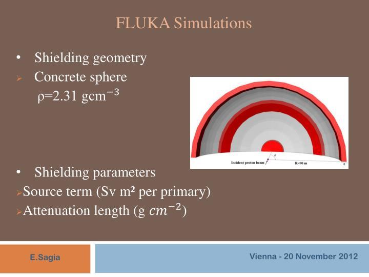 FLUKA Simulations