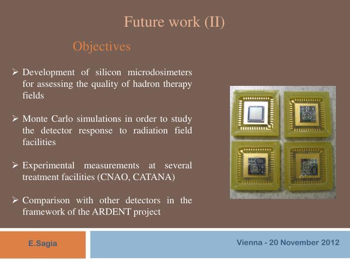 Future work (II)