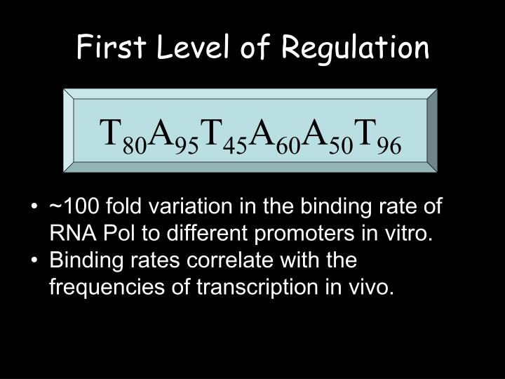 First Level of Regulation