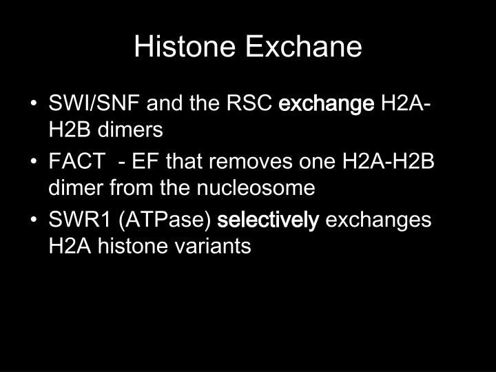 Histone Exchane
