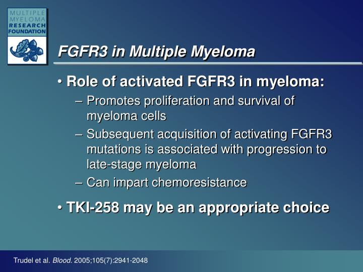 FGFR3 in Multiple Myeloma