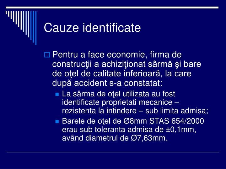 Cauze identificate