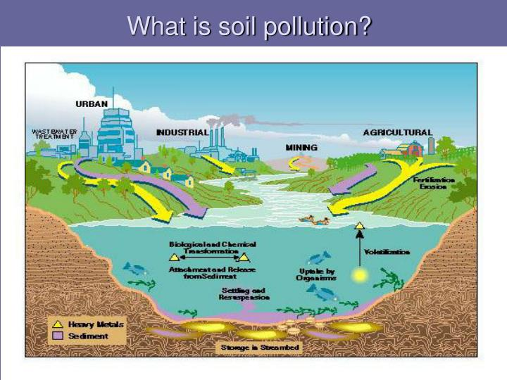 essay on pollution of air water and soil