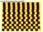 are all the hozontal lines parallel