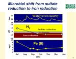 microbial shift from sulfate reduction to iron reduction