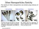 silver nanoparticles toxicity1