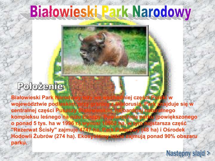 """Białowieski Park Narodowy leży we wschodniej części Polski w województwie podlaskim, przy granicy z Białorusią. Park znajduje się w centralnej części Puszczy Białowieskiej, najbardziej naturalnego kompleksu leśnego na niżu Europy. Powierzchnia parku (powiększonego o ponad 5 tys. ha w 1996 r.) wynosi 10502 ha, w tym najstarsza część """"Rezerwat Ścisły"""" zajmuje 4747 ha, Park Pałacowy (48 ha) i Ośrodek Hodowli Żubrów (274 ha). Ekosystemy leśne zajmują ponad 90% obszaru parku."""