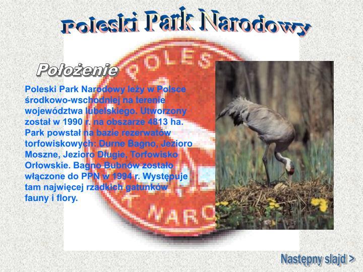Poleski Park Narodowy leży w Polsce środkowo-wschodniej na terenie województwa lubelskiego. Utworzony został w 1990 r. na obszarze 4813 ha. Park powstał na bazie rezerwatów torfowiskowych: Durne Bagno, Jezioro Moszne, Jezioro Długie, Torfowisko Orłowskie. Bagno Bubnów zostało włączone do PPN w 1994 r. Występuje tam najwięcej rzadkich gatunków fauny i flory.