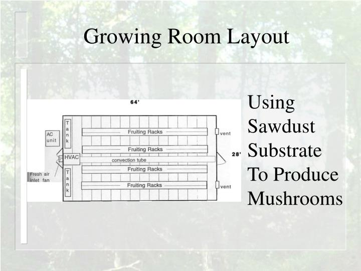 Growing Room Layout
