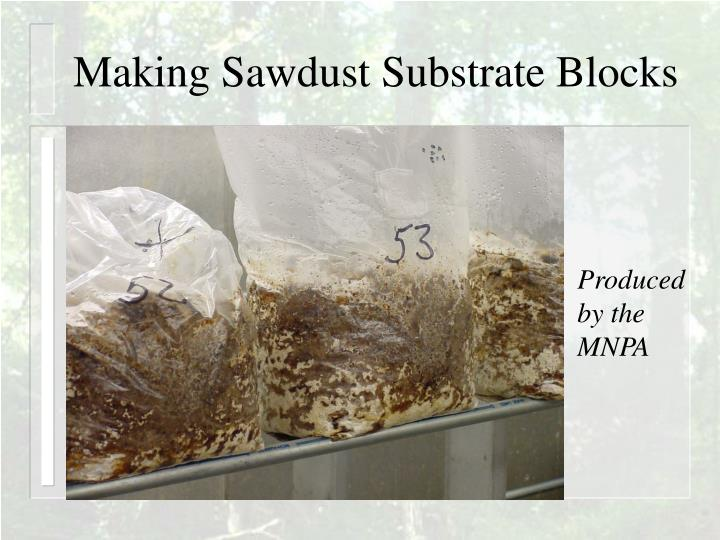 Making Sawdust Substrate Blocks