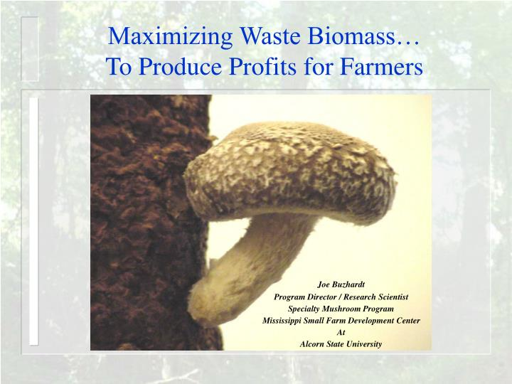 Maximizing Waste Biomass…
