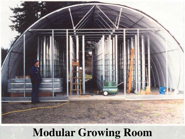 Modular Growing Room