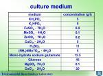 culture medium