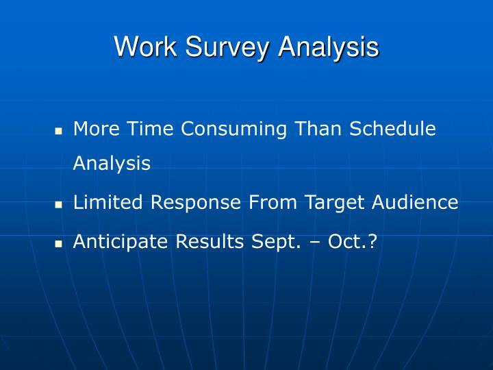 Work Survey Analysis