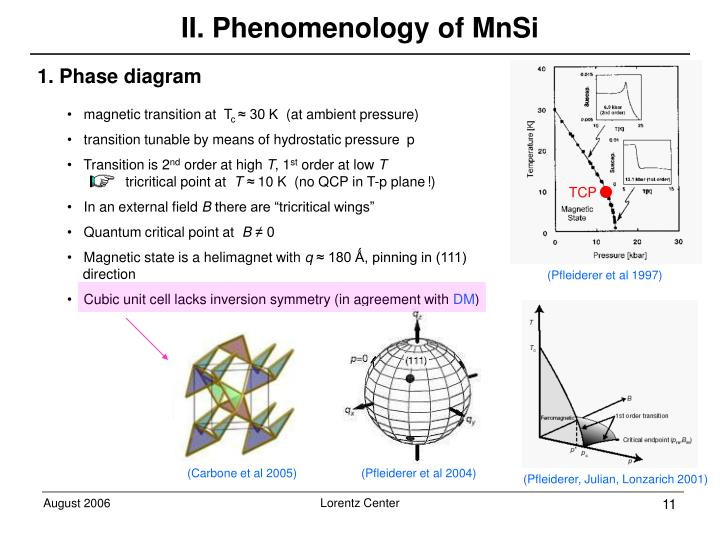 II. Phenomenology of MnSi